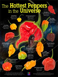 HOTTEST PEPPERS IN THE UNIVERSE